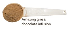 amazing grass chocolate