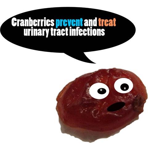 cranberryfact1 copy