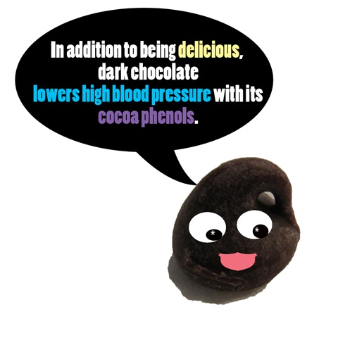 darkchocolatefact1 copy