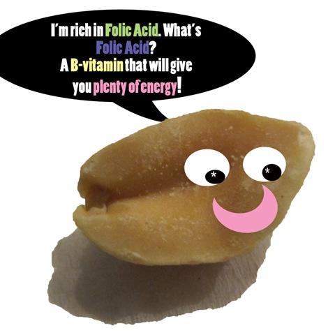 peanutfact1e copy