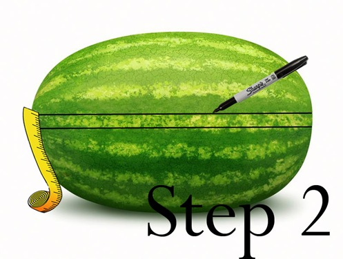 step2 copy