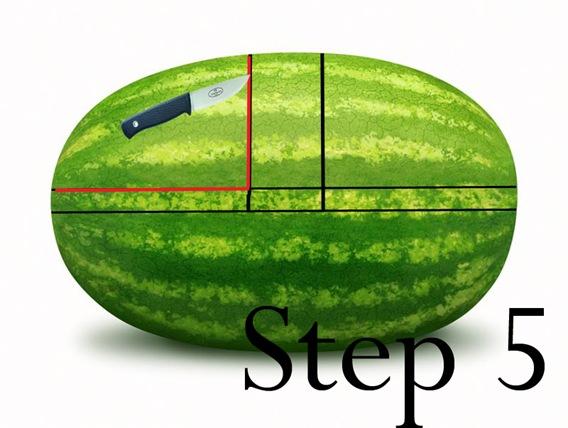 step5 copy